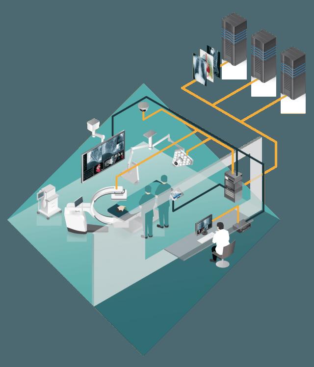OP Network Build